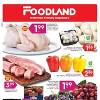 Foodland - Weekly - Summer's On Flyer