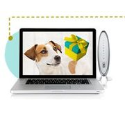Fido home phone hook up