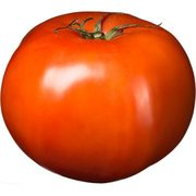 Greenhouse Red Tomatoes On The Vine  - $1.79/lb