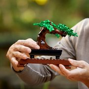 Walmart.ca: Get the LEGO Botanical Collection Bonsai Tree or Flower Bouquet Building Kits Now